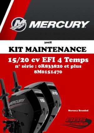 KIT ENTRETIEN MERCURY 300H 15/20cv EFI